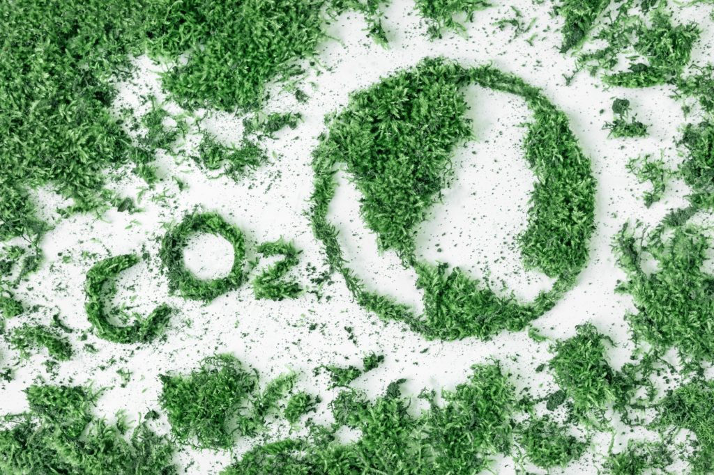 Lettering CO2 and drawing planet earth from grass and moss